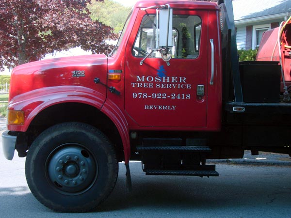Mosher Tree Crane graphics